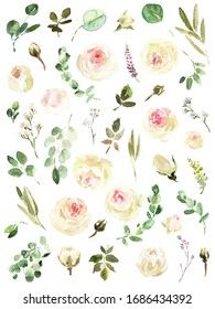 Garden roses high quality watercolor elements: english garden roses white pink blush and pastel greenery, olive branche, eucalyptys, flowers, graphic design, wedding invitation, baby shower, wallpaper