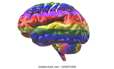 Gay Pride Brain LGBT Mardi Gras graphic 3D render. The letters LGBT & LGBTQIA refer to lesbian, gay, bisexual, transgender, queer or questioning, intersex, and asexual or allied.