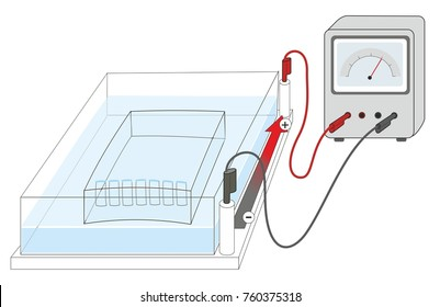 Gel electrophoresis is a technique for separating molecules such as DNA based on their size. The illustration shows the apparatus for electrophoresis.