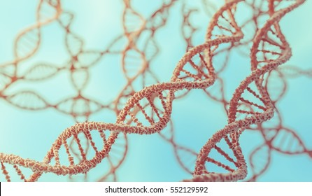 Genetics concept. 3D rendered illustration of DNA molecules in chromosomes.