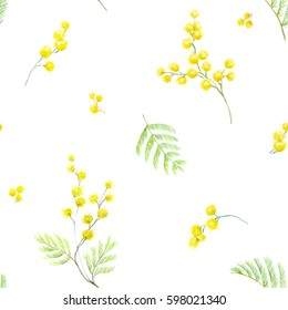 Gentle watercolor pattern mimosa flowers.  Green branches and yellow flowers