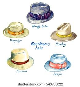 Gentlemen's hats types: Stingy Brim, Campaign, Panama, Porkpie, Cowboy,  hand painted watercolor illustration