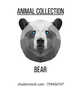 Geometric animal blue eyes bear head background