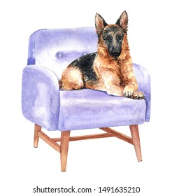 German shepherd of a dog. Watercolor hand drawn illustration. Watercolor Alsatian sleep on sofa chair layer path, clipping path isolated on white background.