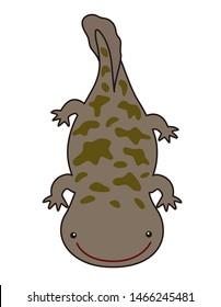 Giant Salamander character illustration cartoon