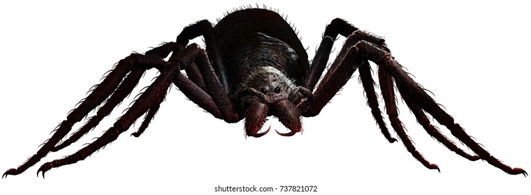 Giant spider 3D illustration