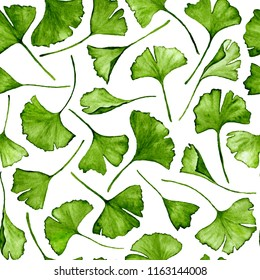Ginkgo biloba leaves floral watercolor seamless pattern. Tree plant known as ginko or gingko. Ginkgo plant herbal alternative medical care anti-oxidant leaves floral seamless textile in colors.