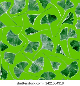 Ginkgo biloba leaves floral watercolor seamless pattern. Tree plant known as ginko or gingko. Ginkgo plant herbal alternative medical care anti-oxidant leaves floral seamless background in green.