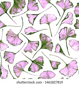 Ginkgo biloba leaves floral watercolor seamless pattern. Garden plant known as ginko or gingko. Ginkgo plant herbal alternative medical care anti-oxidant leaves floral seamless wallpaper in colors.