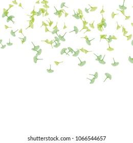 Ginkgo biloba leaves pattern, green leaves