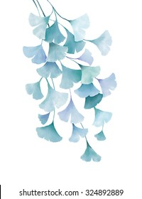 ginkgo biloba watercolor green blue leaves decorative floral drawing illustration isolated on white background wedding invitation greeting cards spring summer tropical plants vintage design