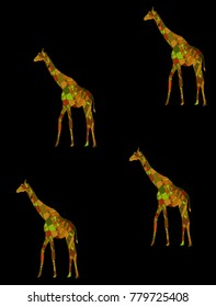 Giraffe. Detailed hand drawn giraffe with abstract patterns on isolation background. Design for spiritual relaxation for adults.