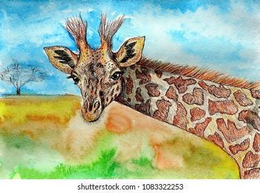 Giraffe. Gouache on paper. Naive Art. Abstract art. Painting gouache, color pencil on paper. Children's creativity