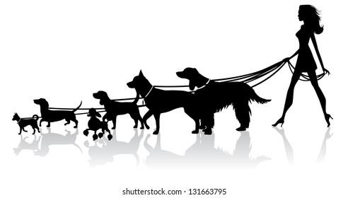 Girl Walking Dogs. JPG