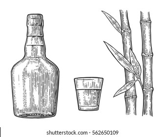 Glass and bottle of rum with sugar cane. Vintage engraving illustration for label, poster, web, invitation to party. Isolated on white background