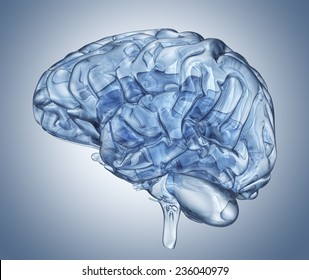 Glass human brain. Clipping path included