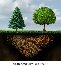 Global agreement shaking hands concept as two different trees from diverse regions showing underground roots coming together in a handshake as a symbol of international cooperation and making a deal.
