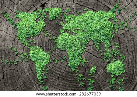 Global spread concept and development as a business concept with a map of the world made of an organized group of persistent vine leaves growing on a dead tree trunk for environmental renewal.