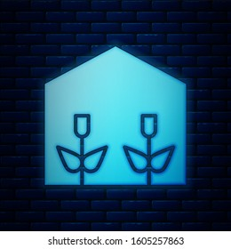 Glowing neon Home greenhouse and plants icon isolated on brick wall background.