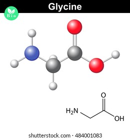Glycine - main amino acid and inhibitory neurotransmitter, chemical model and molecular structure, 2d and 3d illustration isolated on white background, raster