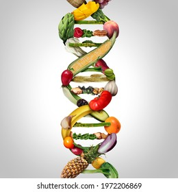 GMO food and Genetically modified crops or engineered agriculture concepts fruit and vegetables as a DNA strand symbol with 3D illustration elements.