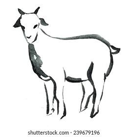goat, animal, new year