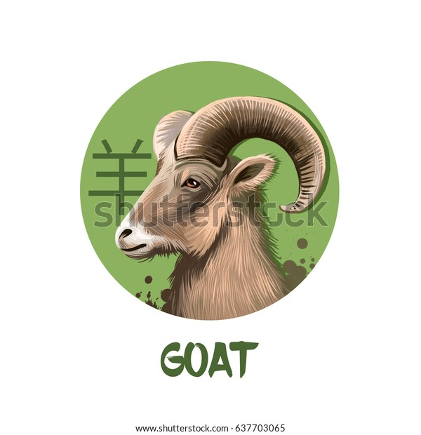 Goat chinese horoscope character isolated on white background. Symbol Of New Year 2027. Animal Ram or Sheep in round circle with hieroglyphic sign, digital art illustration, greeting card design