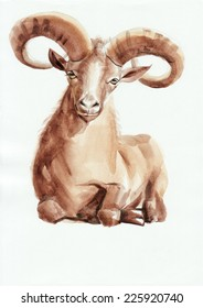 Goat Watercolor Painting. Chinese New Year 2015.