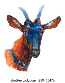 Goat watercolor portrait isolated on a white background