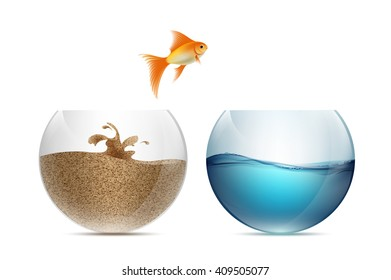 Gold fish jumping out of the aquarium. Aquariums with sand and water. Stock illustration.