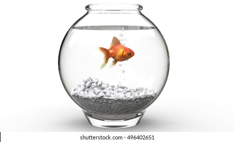 Gold fish swimming in a fishbowl - 3D Illustration