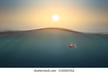 Gold fish under sea water in sunset, for fortune,underwater,,summer themes,3D rendering,3D illustration
