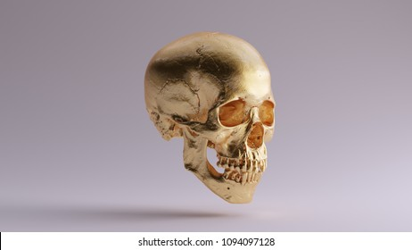 Gold Skull and Jaw Bone 3Q Right 3d Illustration skull scan scsuvizlab CC Attribution