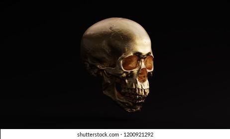 Gold Skull and Jaw Bone 3Q Right 3d Illustration skull scan thingiverse scsuvizlab CC Attribution
