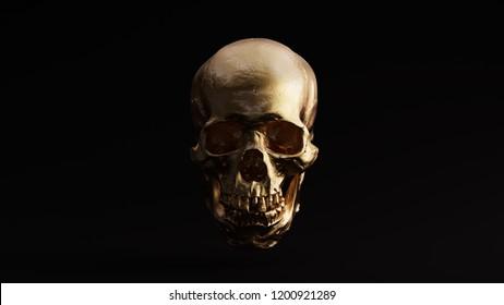 Gold Skull and Jaw Bone Front 3d Illustration skull scan thingiverse scsuvizlab CC Attribution