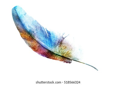 Golden multicolor feather on white. Watercolor