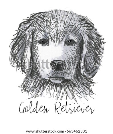 golden retriever puppy quick sketch pen stock illustration 663462331