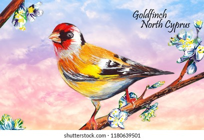 Goldfinch water color drawing