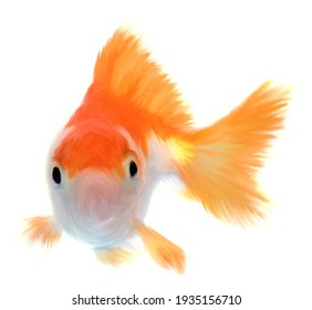 Goldfish pet brush painting illustration isolated on white background, gold fish swimming, drawing animal cartoon.