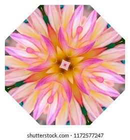 Gorgeous pink, lavender, yellow, orange floral design on white background. Decorative element, ethnic design, web design, anti-stress therapy, meditation