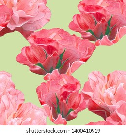 Gorgeous rambling roses on the pistachio background arranged in seamless pattern. Hand drawn watercolor illustration for different decorative purposes - surface design, textile prints, interior decor