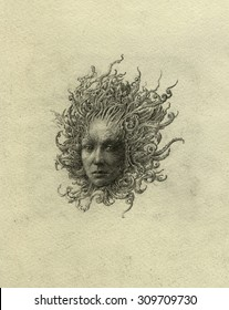 Gorgon head