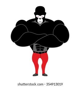 Gorilla bodybuilder. Strong black monkey with big muscles. Athlete wild beast.