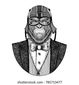 Gorilla, monkey, ape. Animal wearing jacket with bow-tie and biker helmet or aviatior helmet. Elegant biker, motorcycle rider, aviator. Image for tattoo, t-shirt, emblem, badge, logo, patch