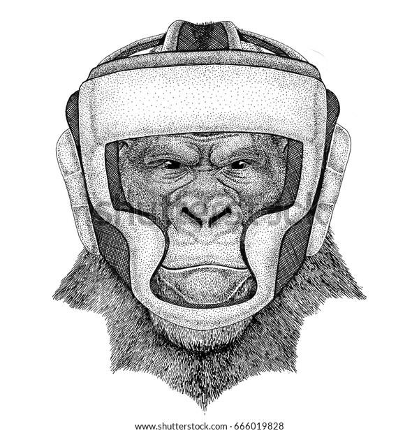 ゴリラ サル サル サル ワイルド ボクサー ボクシング動物