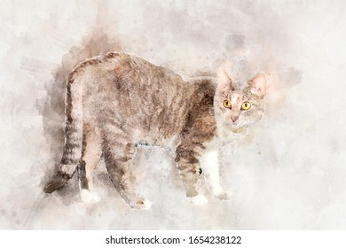 A graceful gray tabby cat with yellow eyes stands and looks at the camera.. Stylization in watercolor drawing
