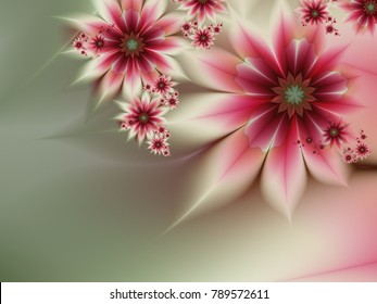 Grafic design for business cards. Fractal image_ template for inserting text. Fractal flower, digital artwork for creative graphic design. Floral template with place for text