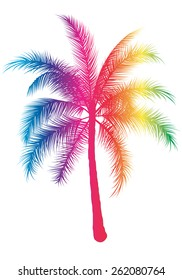 graphic illustration of a Rainbow palm