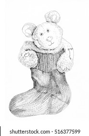 Graphics drawing cute bear in sock gift