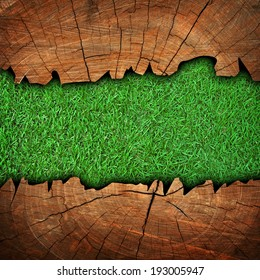grass background with cracked wood